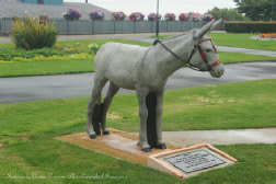 Copyright 2012 Donnas Peterson Dudley the Donkey Statue